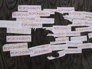 resonsibility2